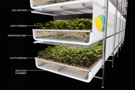 world's largest indoor vertical farm, indoor vertical farm, vertical farm, Newark, New Jersey, converted steel factory, aeroponics, AeroFarms, RBH Group, urban farm, urban farming, sustainable farming, micro fleece cloth, LEDs, zero pesticides,