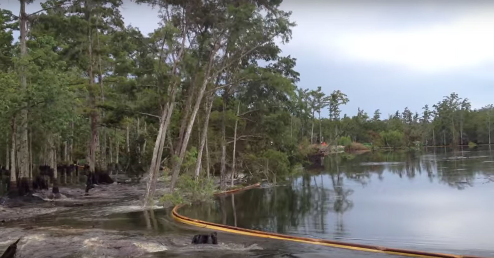 Video 26 Acre Louisiana Sinkhole Swallows Whole Trees In