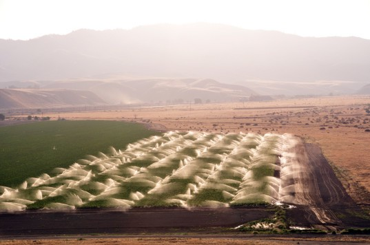 agriculture, farmland, irrigation, California agriculture, Central Valley, drought, water shortage