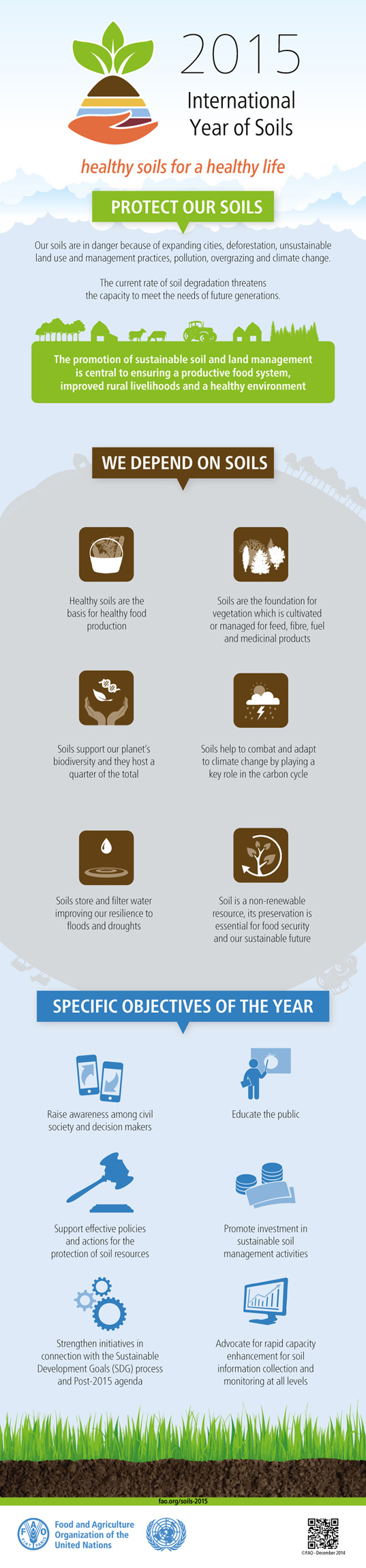 International Year of Soils Infographic