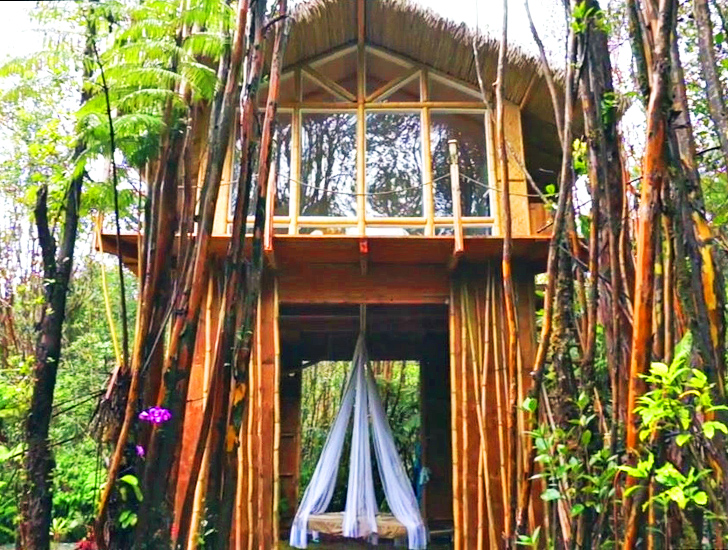 This tiny off grid Hawaiian home cost just  11 000 to build   Inhabitat    Green Design  Innovation  Architecture  Green BuildingThis tiny off grid Hawaiian home cost just  11 000 to build  . Hawaiian Home Designs. Home Design Ideas