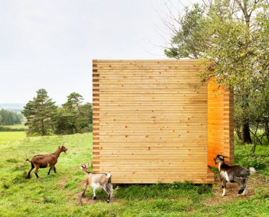 Michael Kühnlein, pygmy goats, Bavaria, goat barn, goat shed, wooden shed, timber shed, spruce, spruce planks, Holzbaupreis Bayern 2014, wooden architecture