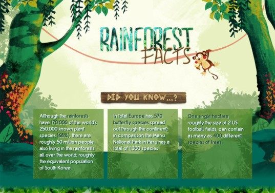 INFOGRAPHIC: Why are rainforests so important?