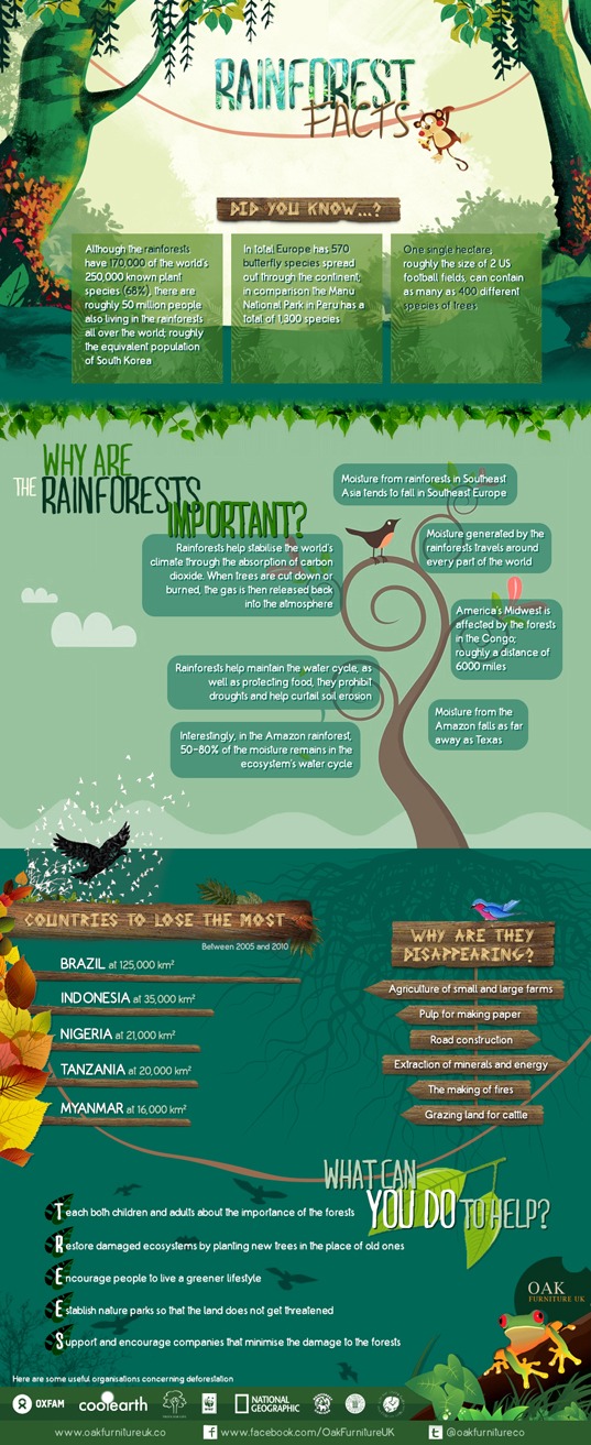 Rainforest_facts_infographic