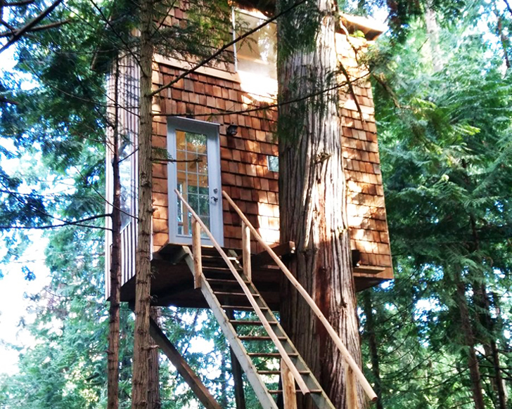 Raven Loft Is A Small Sustainable Treehouse Home In Bc