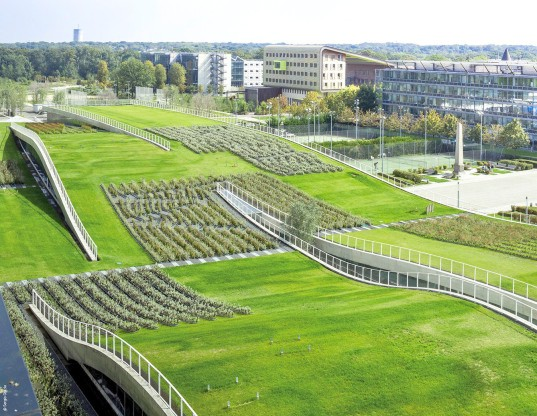 France Requires All New Buildings To Have Green Roofs Or
