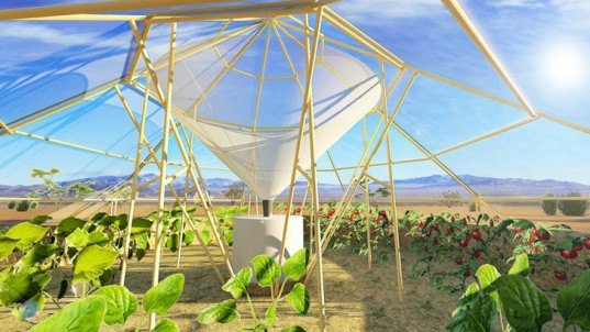 green design, eco design, sustainable design, rainwater collection, Roots Up, Dew Collector Green House, self-reliant farming Ethiopia