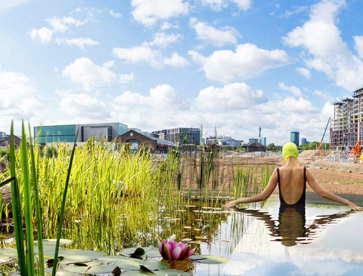 The uk s first natural public swimming pool will use - Public swimming pool design ...