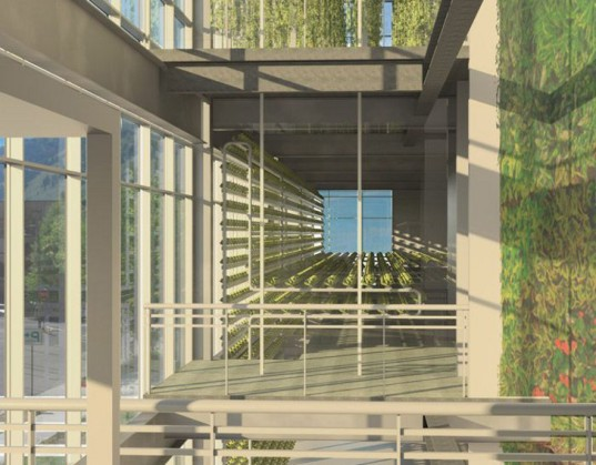 wyoming, vertical harvest, vertical farm, vertical farming, hydroponics, food security, local produce, sustainable food