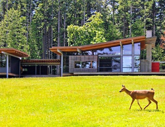 Bohlin Cywinski Jackson, green-roofed house, Henry Island residence, green roof, natural materials, plywood, cedar, Washington architecture, house on stilts, pavilion, green architecture