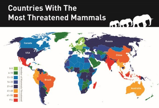 INFOGRAPHIC: The countries with the most threatened mammals in the world