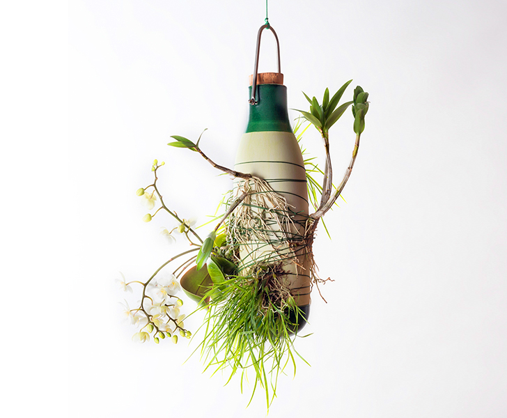 Dossofiorito\'s hanging Epiphytes vases allow plants to grow as ...
