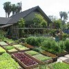 This family produces 6,000 pounds of food per year on 4,000 square feet of land