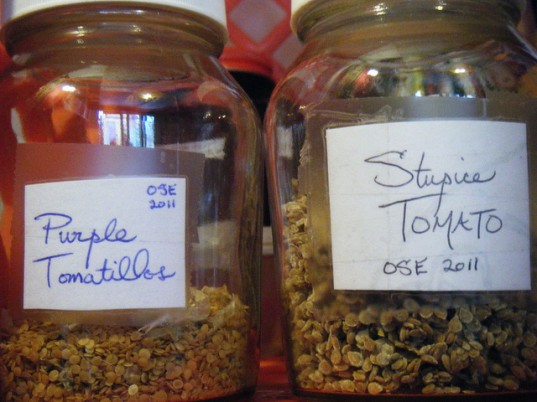 urbanfoodwarrior, seed library, seed exchange, seed bank, community seed library, seeds