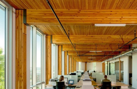 The American Institute of Architects, AIA Award, sustainable architecture, green roof, office building, water management, solar design, solar power, solar panels, passive sustainability, irrigation, energy-efficient building, green skyscraper