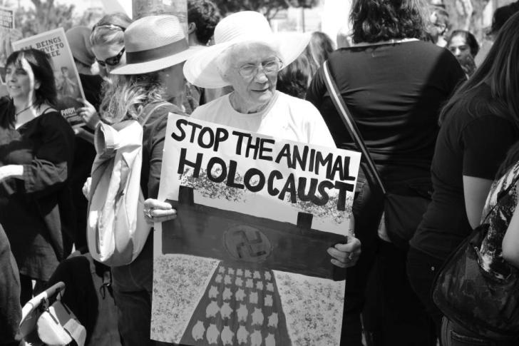 dogs and the holocaust
