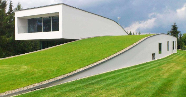 Stunning Green Roofed Autofamily House Features A Drive