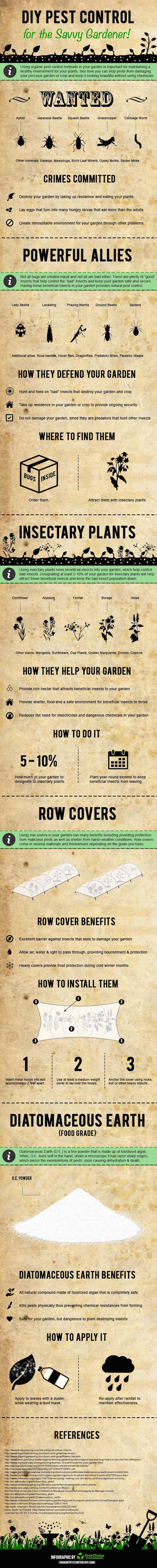 Infographic, First Choice environmental, organic gardening, organic pest control, diy pest control, pest control, reader submitted content