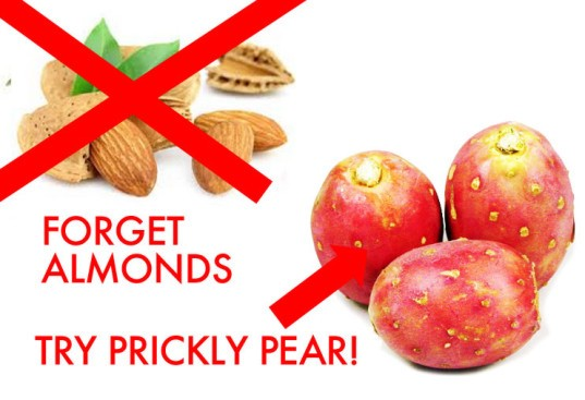 Forget almonds, try prickly pear, Prickly Pear, Nopales, cactus fruit, no almonds, water-friendly foods