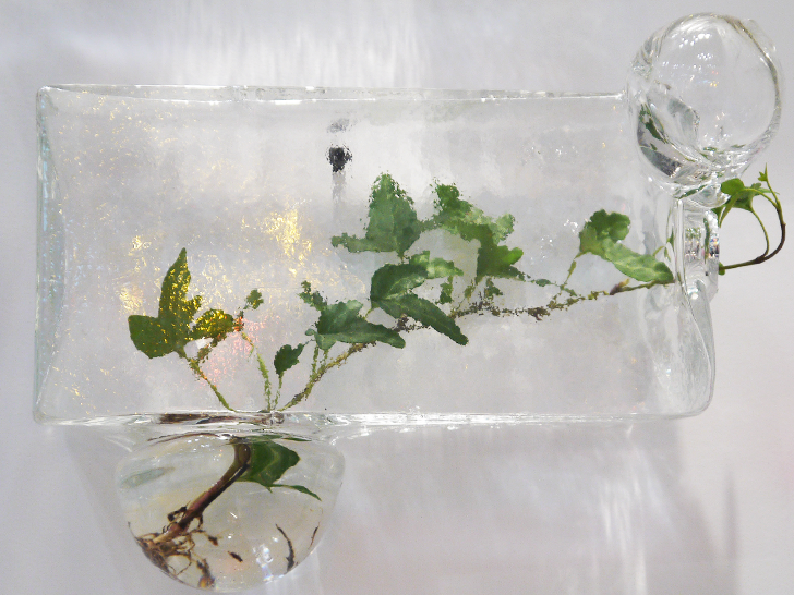 OffCentre Invites Nature Into Small Spaces With Hand Blown Glass