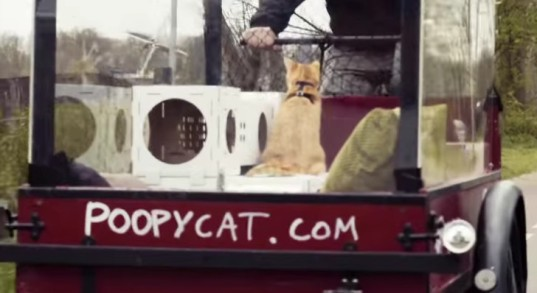 poopy cat, thomas vles, mushi and cheesy, amsterdam to london, bike amsterdam to london, cats on bike trip, cats on bike ride, bike ride stunt, uk launch poopy cat, recycled litterboxes, disposable litterboxes, recycled cat playhouses, modular cat playhouses, modular kitty playhouses, recycled kitty playhouses