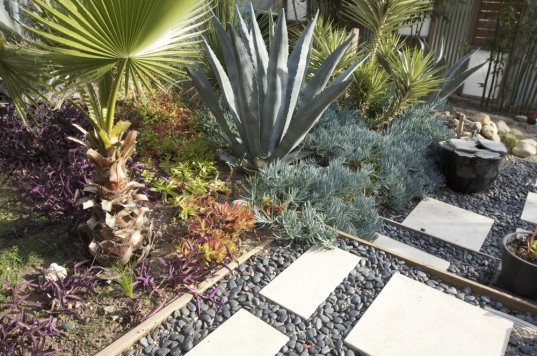 xeriscaping, landscaping, garden, drought, low water, sustainable, green, cactus, agave, desert