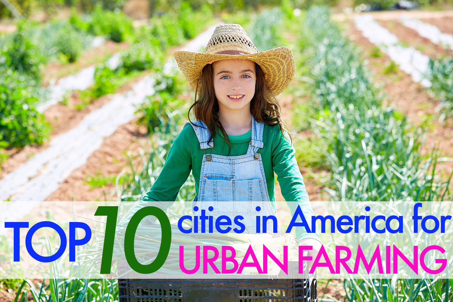 Top 10 cities in the U.S. for urban farming