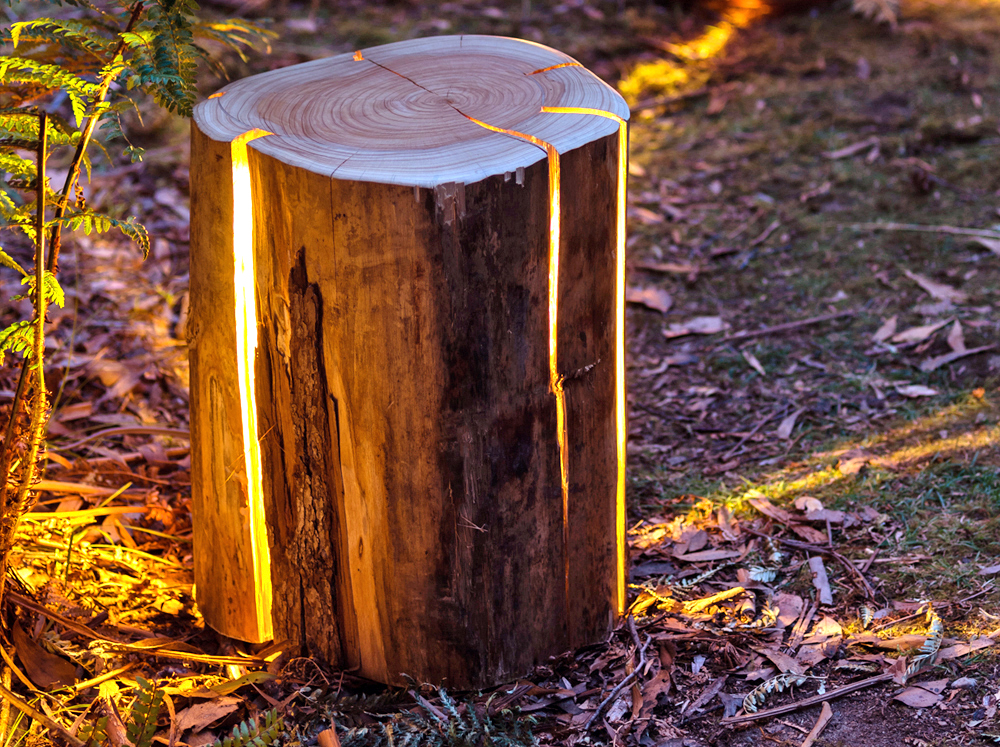 Duncan Meerding transforms tree stumps into lamps that double as tables and stools