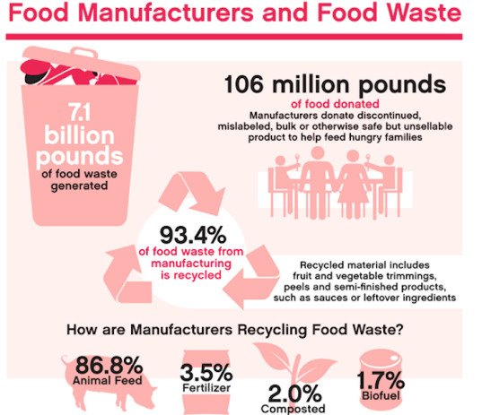 world environment day, food waste, wasting food, composting, compost, buy local, grow food, gardening, bulk buying, organic food, organic gardening, 12 global organizations take on food waste, organizations tackling food waste, fighting food waste