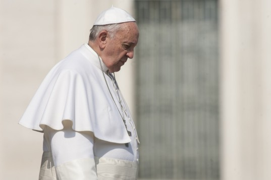 climate change, pope francis, vatican, vatican city, encyclical, papal document, papal statement, papal encyclical, laudato si, combating climate change