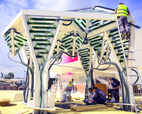 the future of food is green, algae, urban algae canopy, urban algae folly, algae canopy, green design, sustainable design, eco design, futuristic design, bio-digital design, ecoLogicStudio, Milan Expo 2015, algae, Spirulina, food, fuel and design, interactive pavilion, microalgae, carbon sequestration