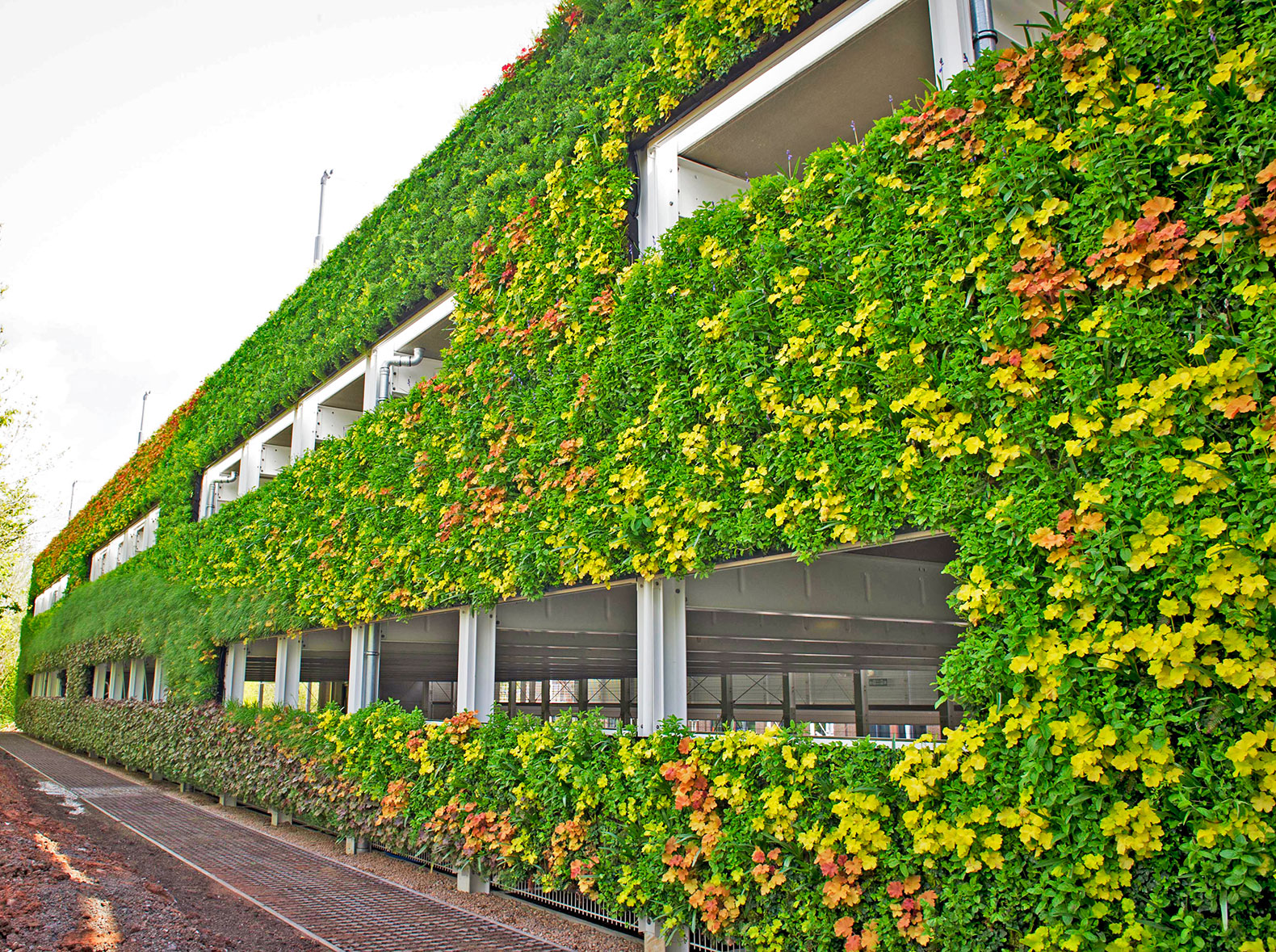 living Wall Inhabitat Green Design Innovation Architecture