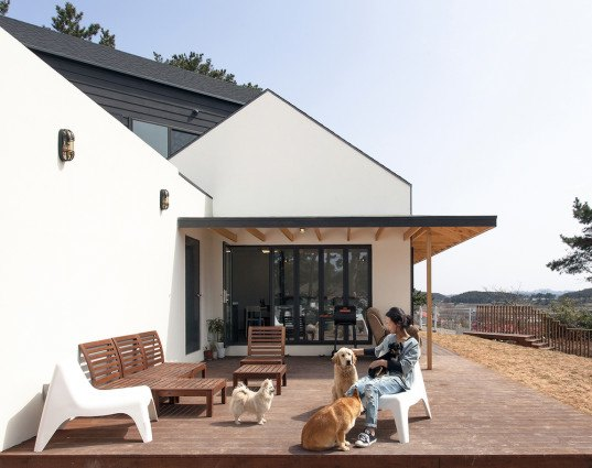 Bow-wow House, Bow-wow house by Design Band YOAP, Design Band YOAP, dog friendly house, dog friendly guesthouse, bow wow house south korea, south korea, south korea architecture, timber framed architecture, timber framed house, asphalt shingles, cement siding panels, dog guesthouse,