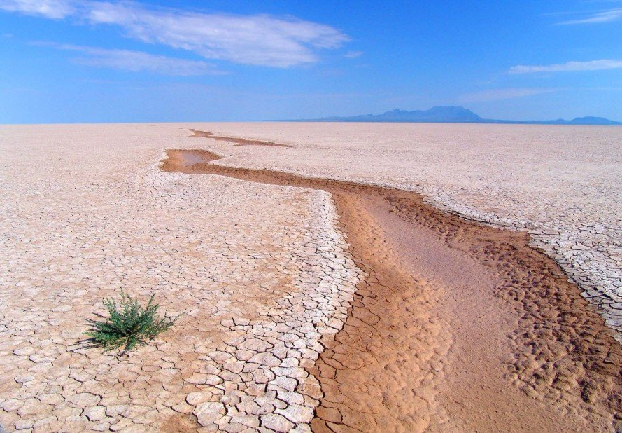 Researchers discover massive new carbon sink that stores GHG ...