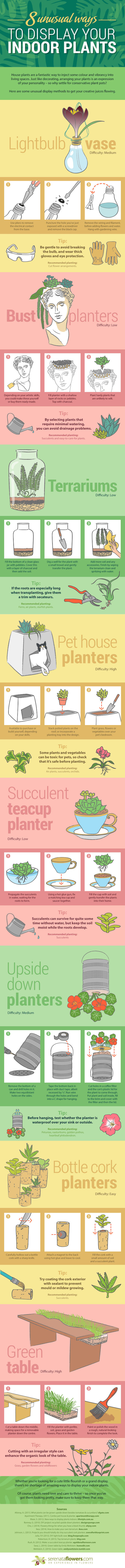 Serenata Flowers, infographic, reader submitted content, houseplants, plants, creative plant display, DIY plant display, plant bust, plant table DIY, bottle cork planters, upside down planters, succulent teacup planters, pet house planters,