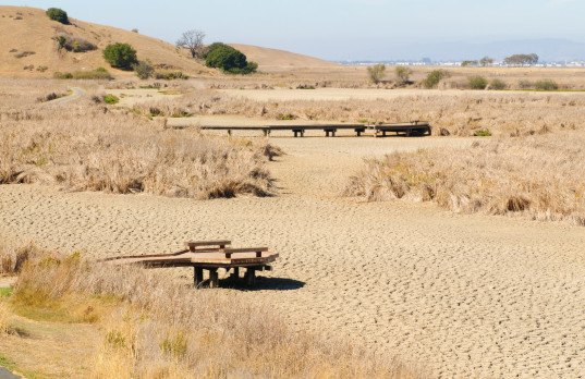 california drought, drought linked to climate change, drought linked to global warming, global warming worsens drought, california, Park Williams,