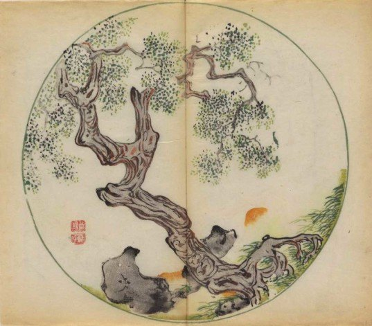 Cambridge University Library, oldest multicolor printed book, Manual of Calligraphy and Painting, watercolor-like book, Chinese book, Douban, nature drawings, Chinese poems, hand-painted book