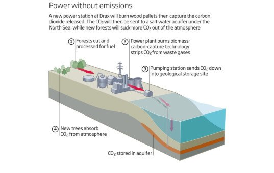 drax power station, yorkshire, green power plant, biomass, sustainable fuel, sustainable electricity, carbon capture and storage, white rose carbon capture project, negative emissions, climate change, carbon emissions, greenhouse gas emissions, wood pellets
