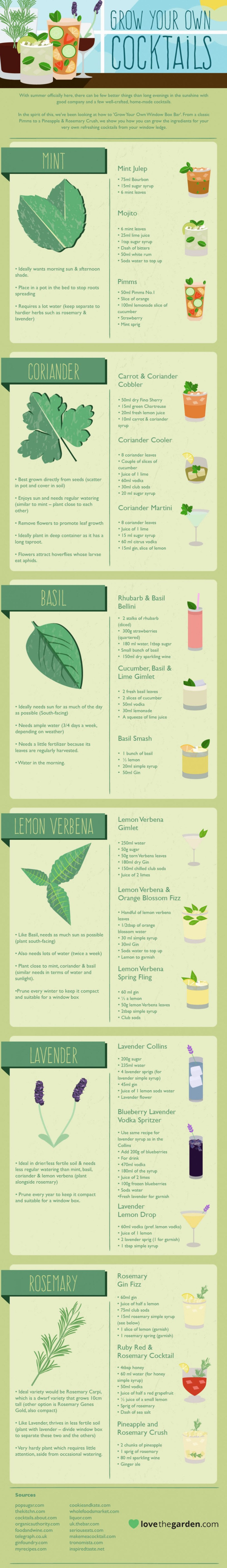infographic, grow your own cocktail, cocktails, drink recipes, gardening, recipes, garden recipes, herbal cocktails, basil cocktails, lavender cocktails, cocktail recipes,