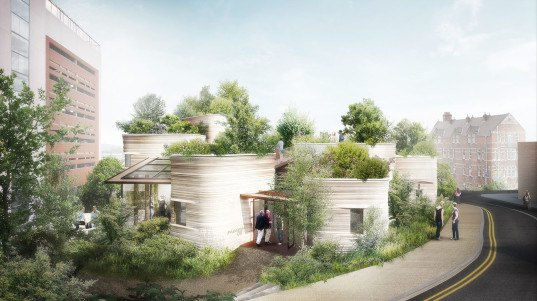 Thomas Heatherwick Studio, Maggie's center, Maggies Yorkshire, UK architecture, cancer care center, medical building, green roof, green-roofed building, public garden, green architecture