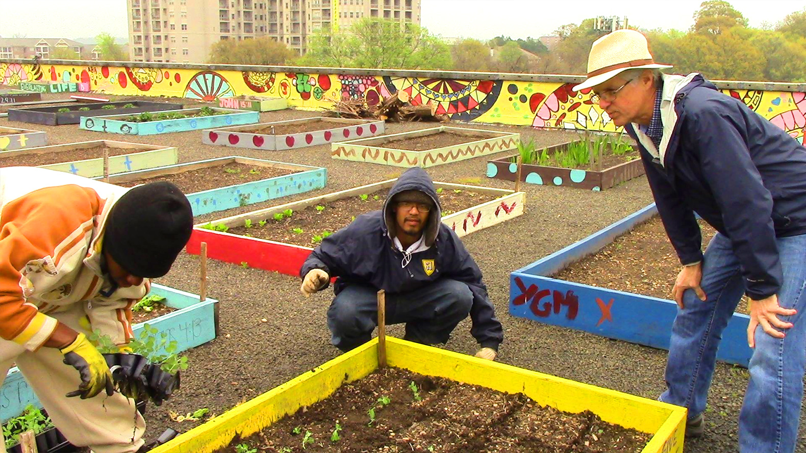 Homeless folks help feed their entire shelter with this flourishing rooftop garden