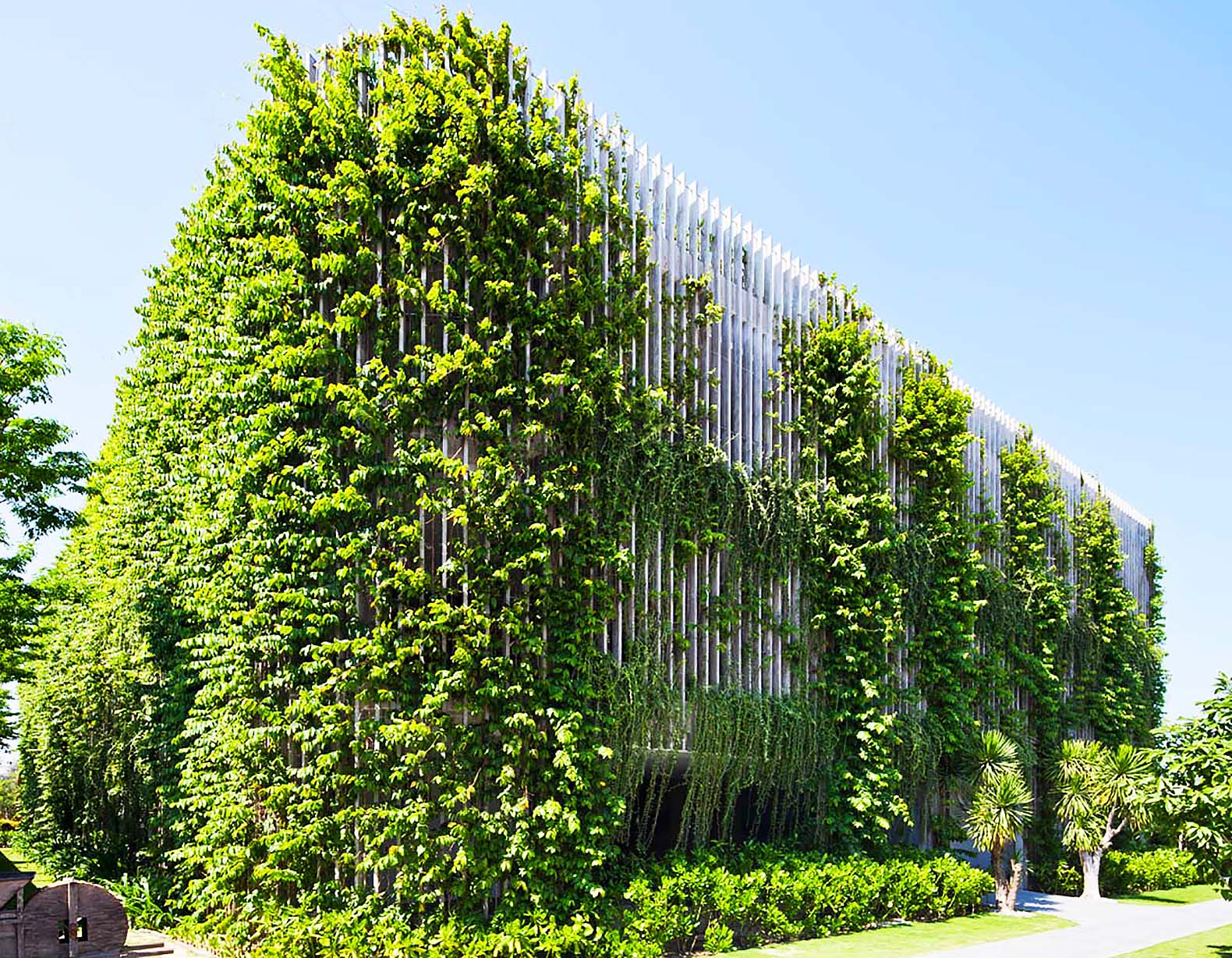 vo trong nghias babylon hotel in vietnam is wrapped in a flourishing veil of plants and vines