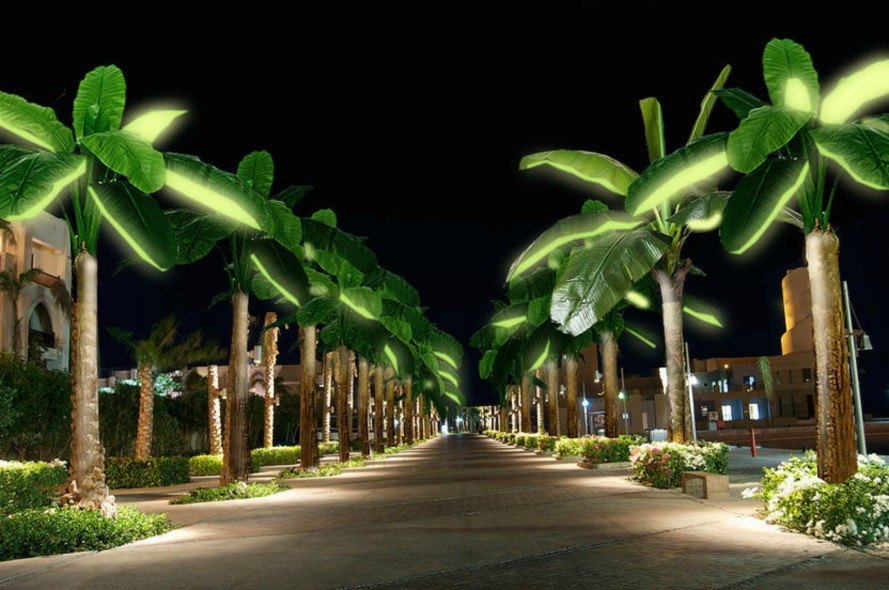 Solar Palms Bring Exotic Lighting In The Shape Of A