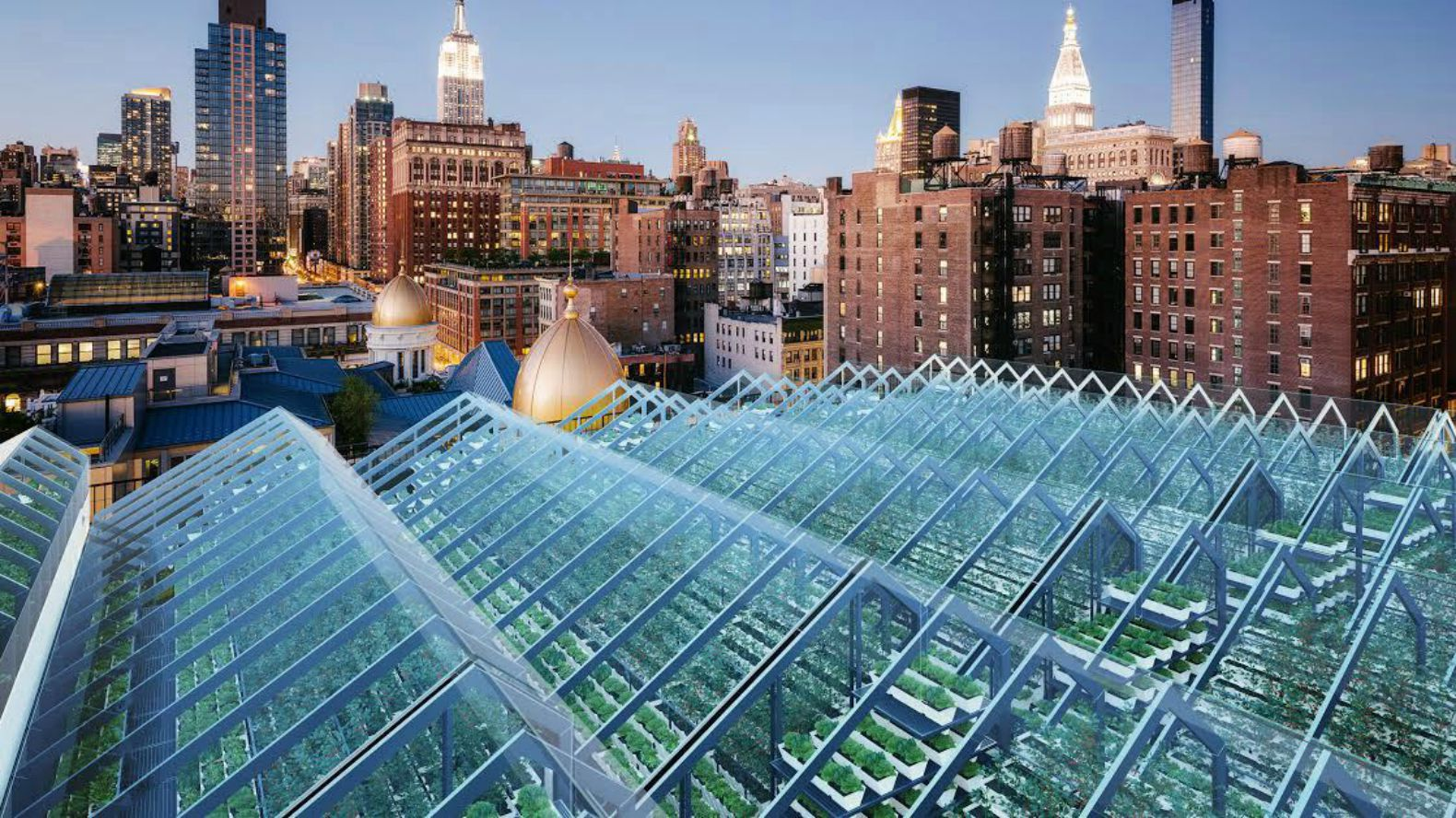 Vertical farming inhabitat green design innovation for Fish tag nyc