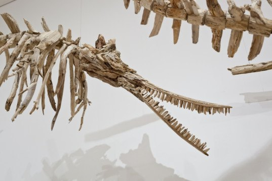 Jonathan Latiano, baiji, Baiji dolphins, Chinese dolphins, freshwater dolphins, dolphin extinction, species extinction, extinction, animal-inspired installation, Baltimore Museum of Art, Yangtze River, China, art, driftwood, driftwood installation, driftwood art