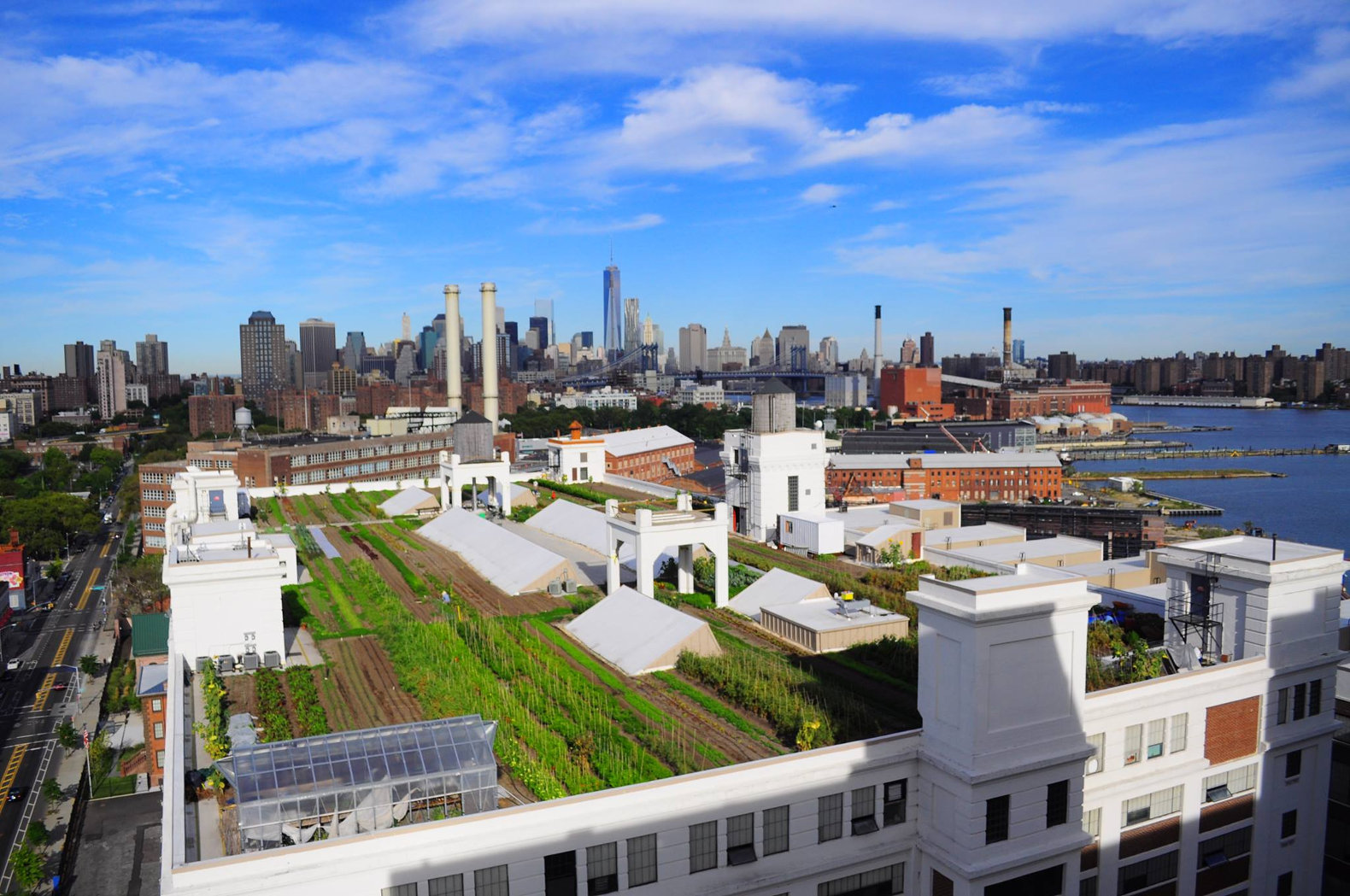 Green infrastructure initiative to create eco friendly for Whitespace architects careers