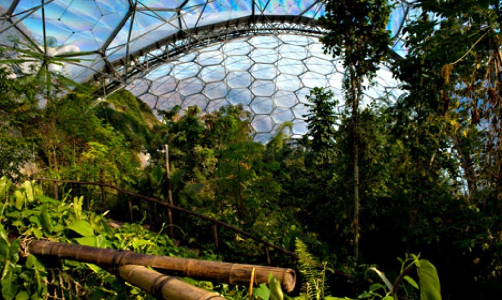 Another massive Eden Project is being developed in China