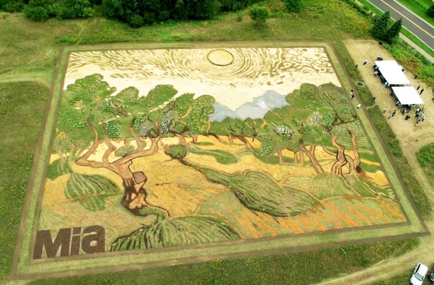 Stunning Van Gogh Inspired Land Art Springs To Life In A
