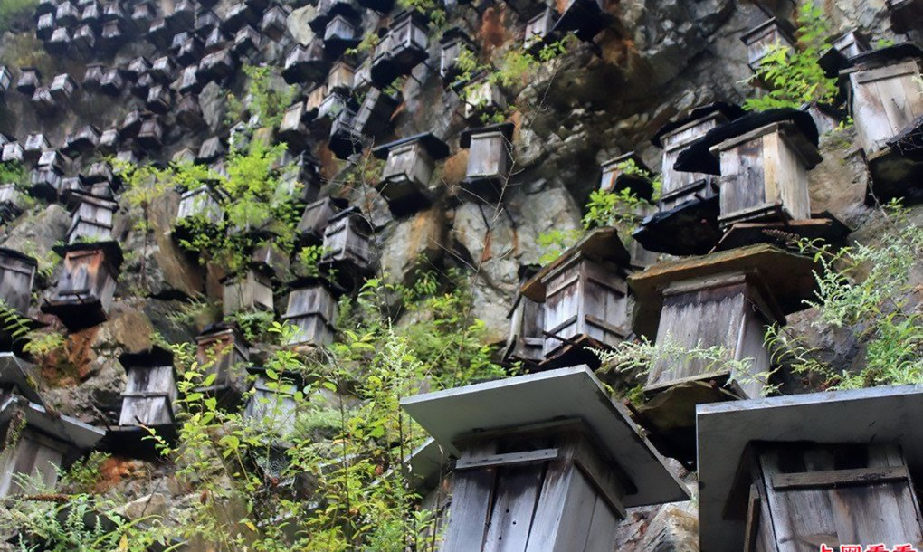 Hundreds Of Beehives Hang Off A Steep Cliff In China To