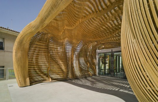 Tomas Amat, cicada, design, architecture, Spanish architects, Spanish design, insects, environment, Alicante, Spain, art gallery, cultural center, biomimicry